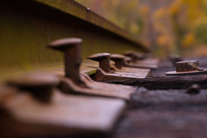 Riding the Rail by bethwilliamsphifer - Below My Knees Photo Contest