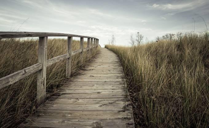 To The Horizon by floraehrlich - Boardwalks Photo Contest