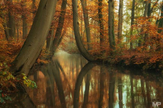 Keep on Dreaming by martinpodt - Image of the Year Photo Contest by Snapfish