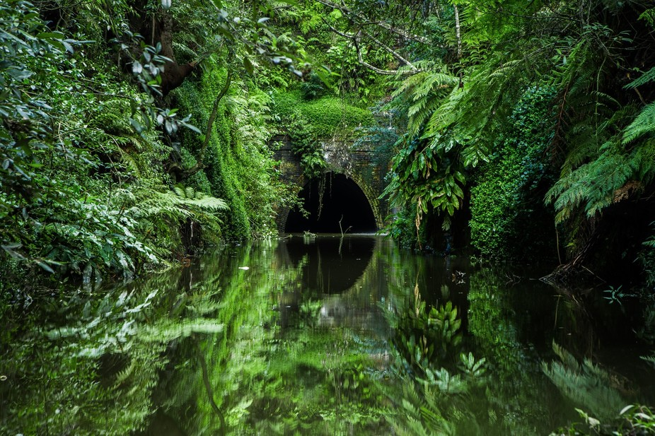 An abandoned rail way tunnel after a downpour