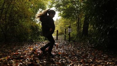Last rays of Autumn
