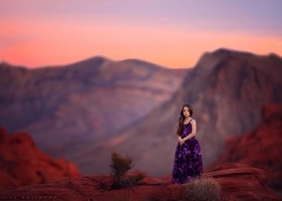 Desert Sunet