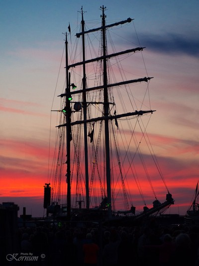 Masts in the sunset