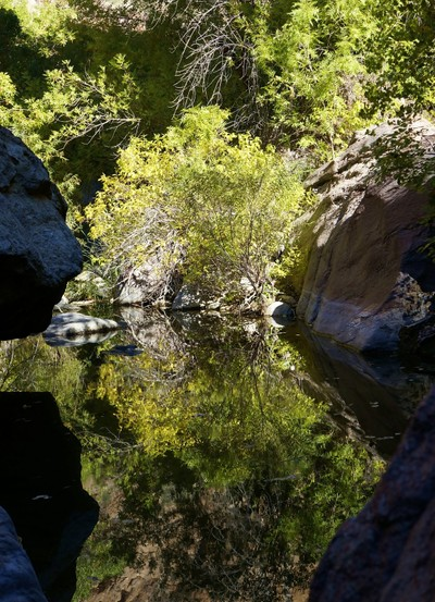 Bowing To Drink ( Canyon of Mirrors )