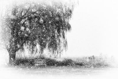 Bientôt la Neige