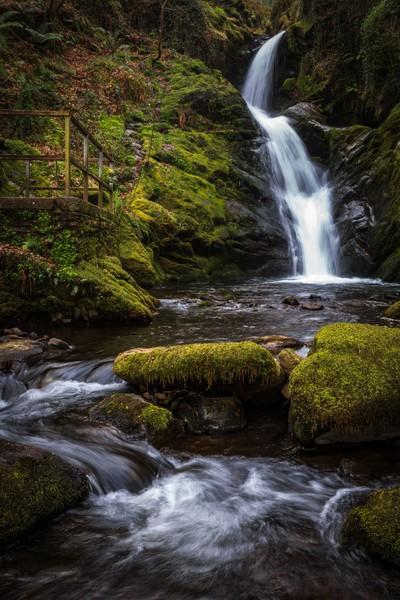 Dolgoch Falls, Mid Wales, image 2