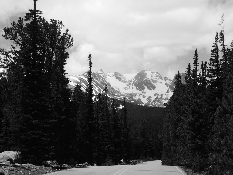 Taken on the forest road leading into Brainard Lake Recreation Area