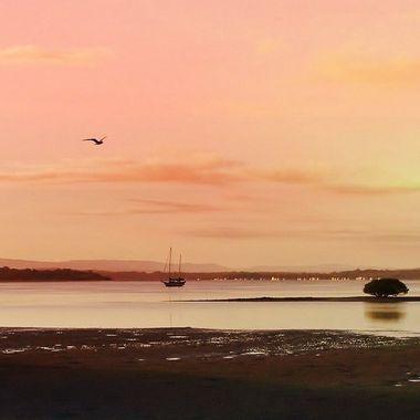 Pink sky at Dawning