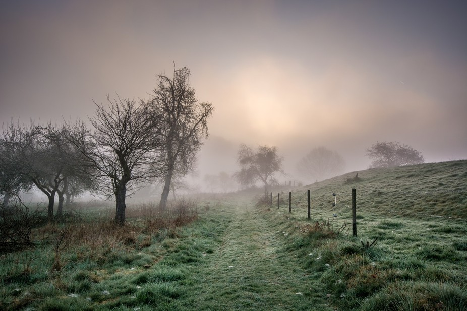 A trail leading into the unknown taken on a foggy morning in Langwieden Germany.