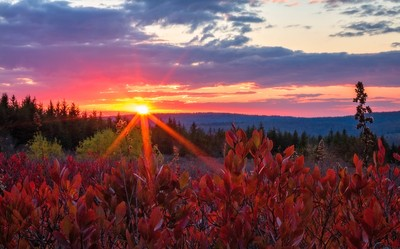 Dolly Sods Sunset, Dolly Sods, West Virginia