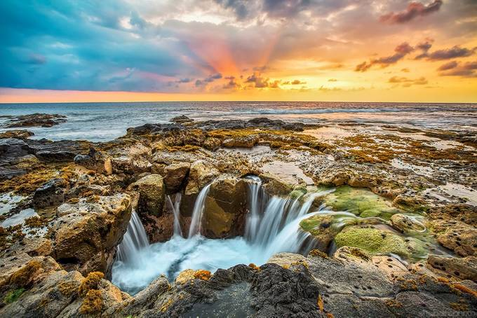 Puka Up by ShabdroPhoto - Earth Day 2017 Photo Contest