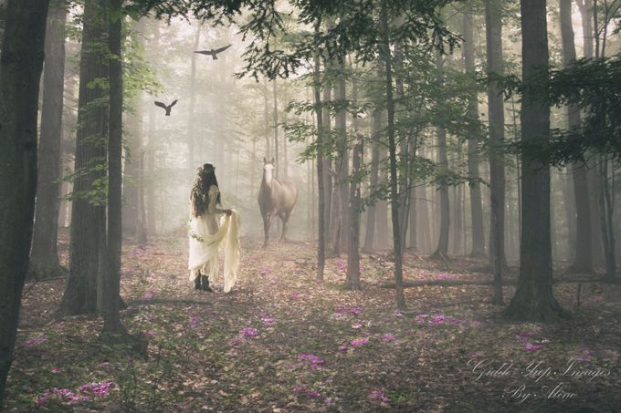 Fantasy Forest by Giddeyupimages - Fairytale Moments Photo Contest