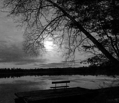 Down by the lake shore on a moon covered night