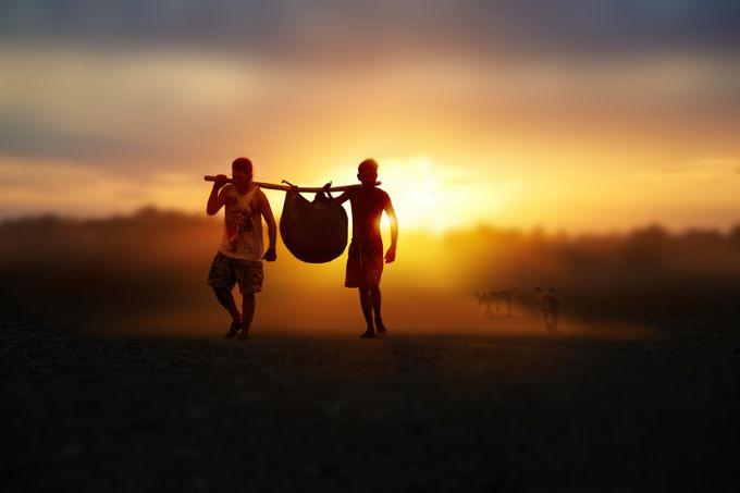The Sun Behind Photo Contest Winner