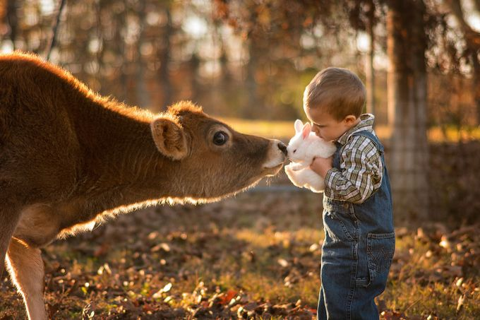A boy and his bunny by philliphaumesser - Children and Animals Photo Contest