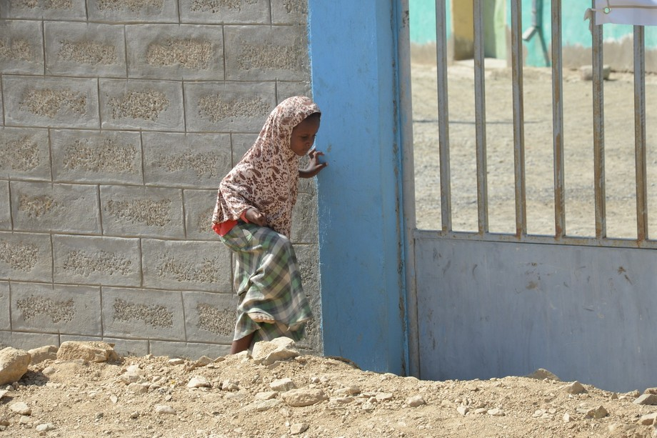 A young Ethiopian girl walking home. Photo was taken in northeast Ethiopia in the Afar region clo...