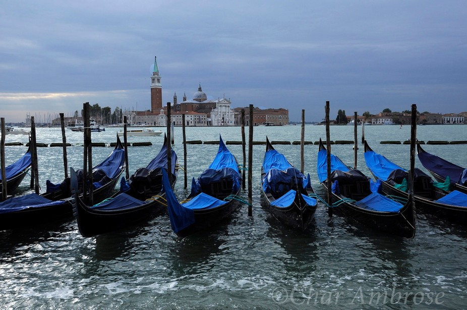 Parked Gondolas at St. Mark's Square m