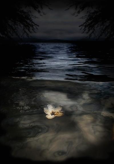 Adrift.....