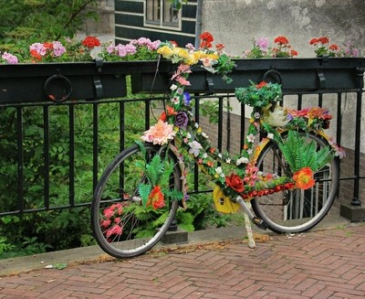 Flower cycle power.