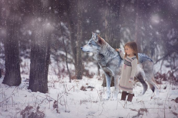 Winter Friends by Annelisenicolephotography - Image of the Year Photo Contest by Snapfish