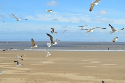 A Windy Day at Barry Island