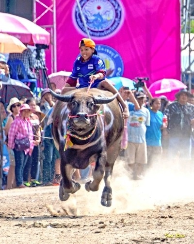 Kid Rides Flying Water Buffalo