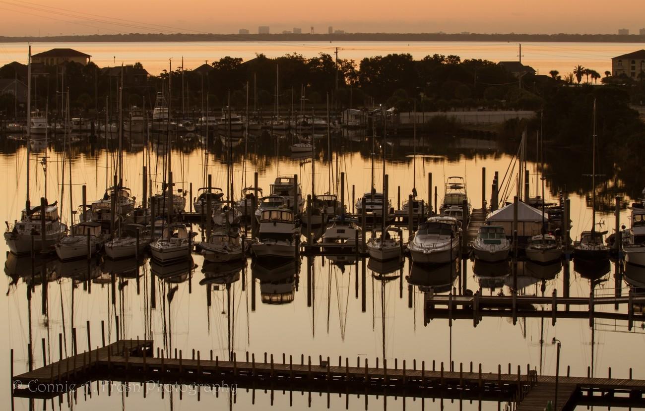 Boats at Harbor View Marina