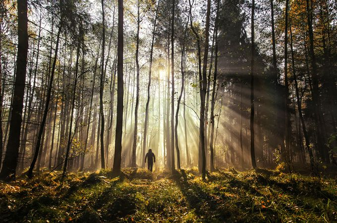 Man in the light by akzs456 - Image of the Year Photo Contest by Snapfish