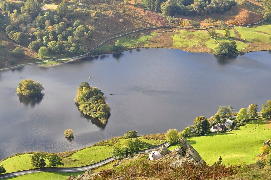 The view of Rydal Water was of no interest to the sheep, but she appeared happy with the quality of the grass.
