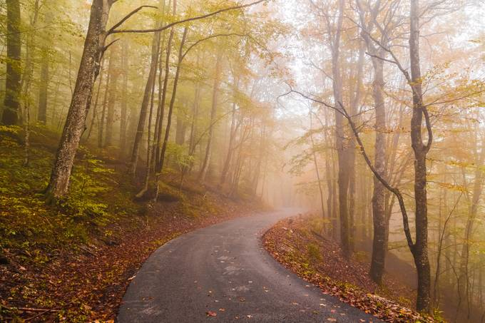 Follow the Fall by StephenBridger - Country Roads Photo Contest