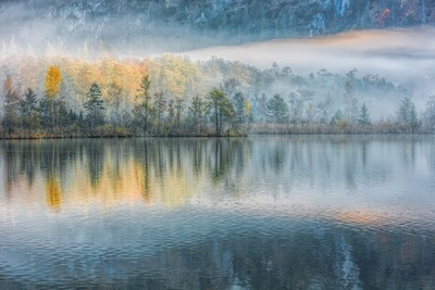 ~ Almsee Tranquility ~