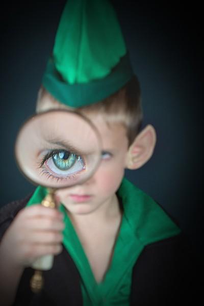 Detective Elf