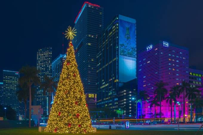 Christmas in Miami by PhilMcCabe - Holiday Lights Photo Contest 2017