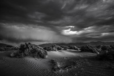 Desert Storm III BW