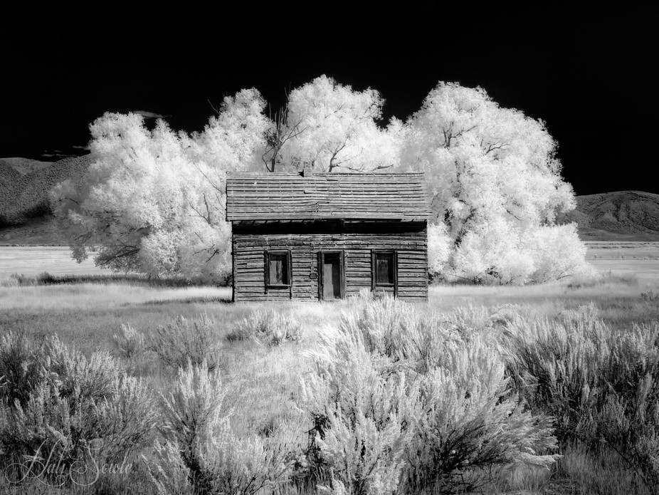 A deserted house somewhere in Wyoming.