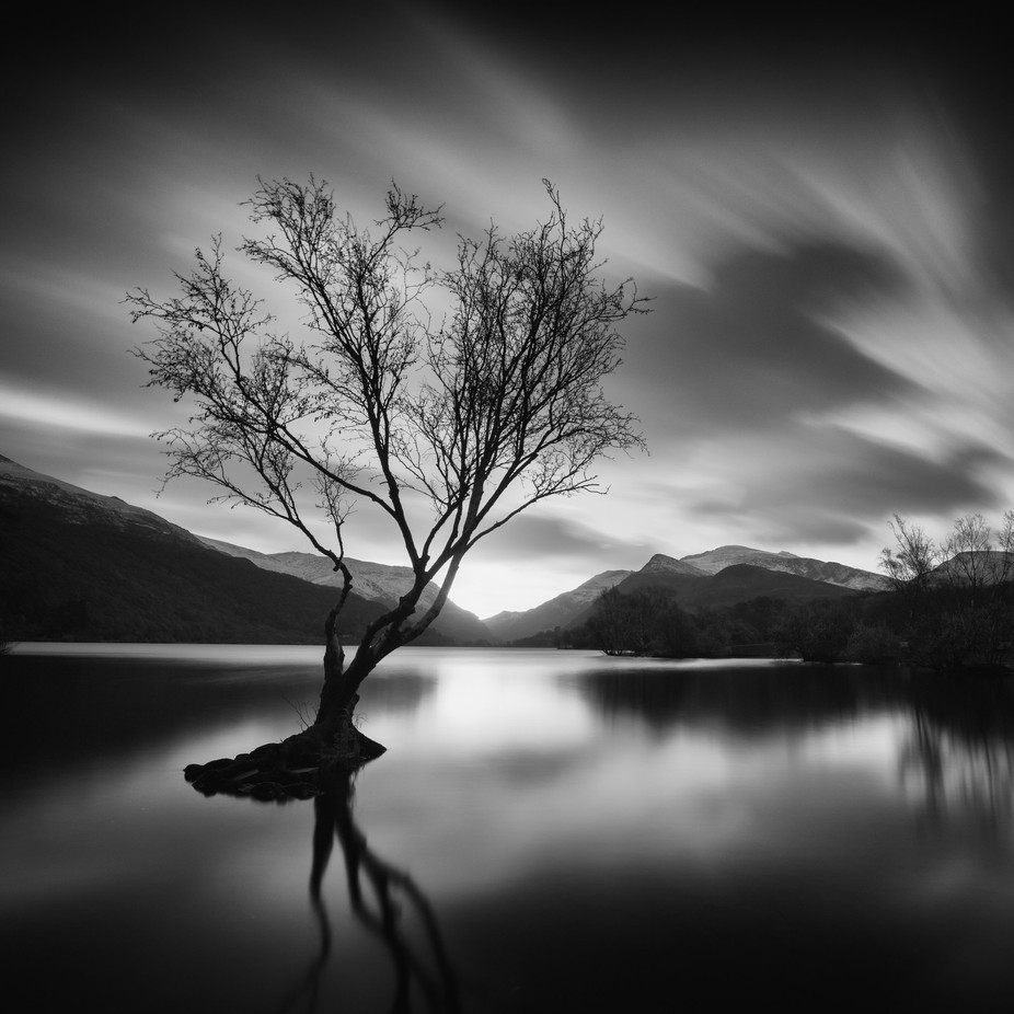 Llyn Padarn Tree by SteveCheetham - Long Exposure Views Photo Contest