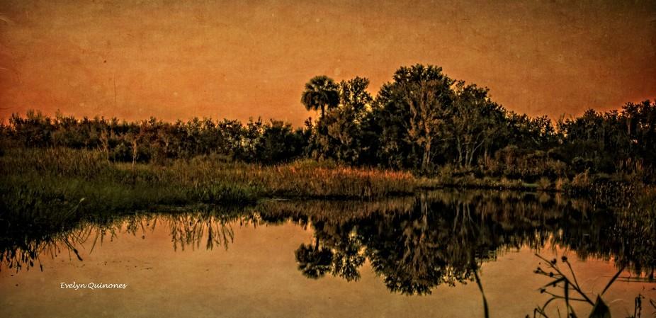 Lake Woodruff Wildlife Refuge, DeLeon Springs, FL.