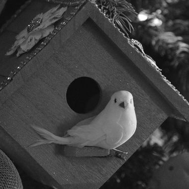 On a photo adventure with my photography club, I spotted this birdhouse on a Christmas tree display. The theme for this adventure was black & white photos and we went to a tree-lighting festival in town.