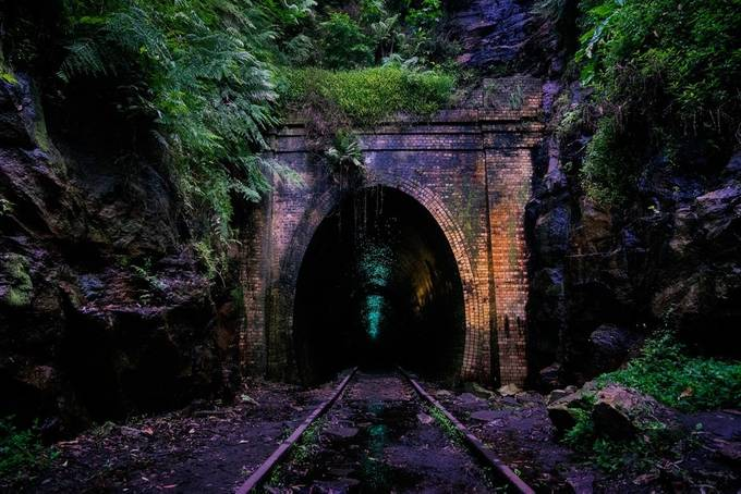 they lead you in by staceyskalkos - Empty Railways Photo Contest