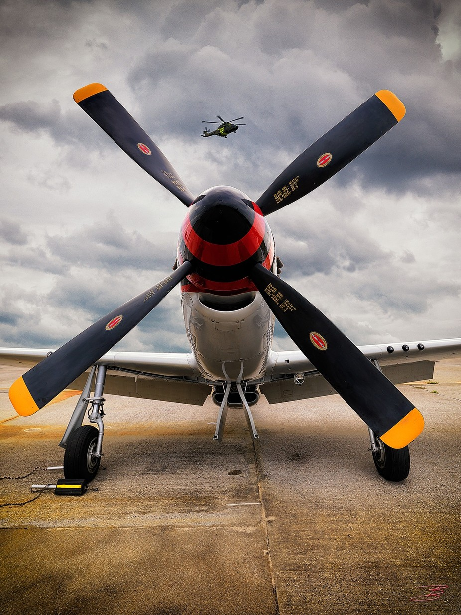 Merlin over Mustang by BenHalen - Your Point Of View Photo Contest