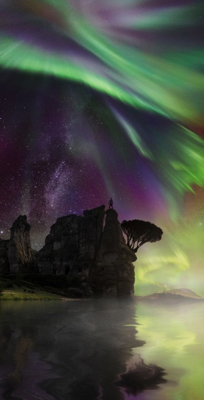 Standing Tall under the Auroras