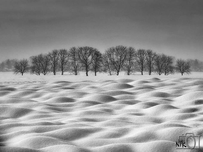 EROTIC LANDSCAPE - II by nikosladic - Patterns In Black And White Photo Contest