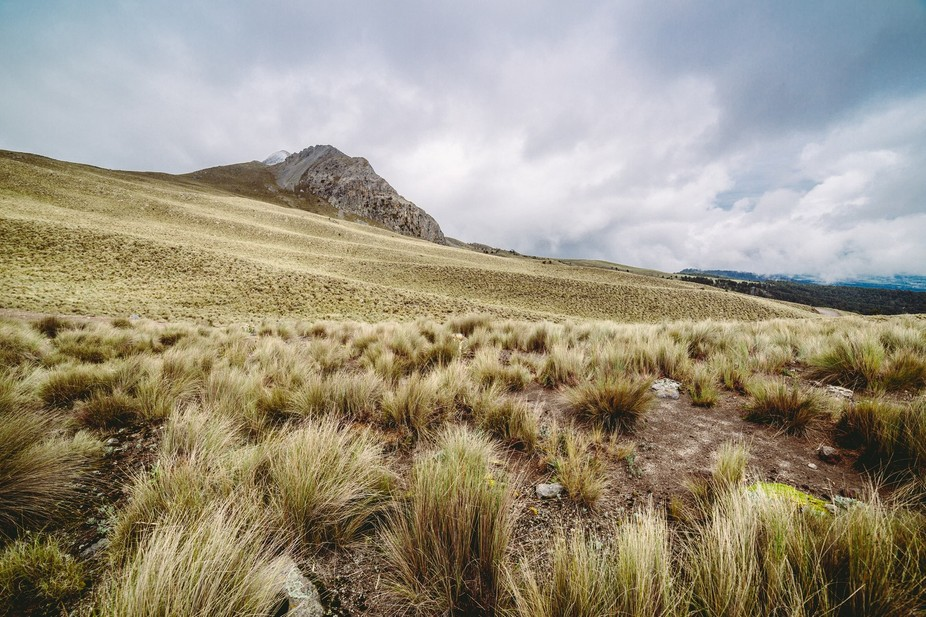Heading to the crater of Nevado de Toluca you can find this beautiful landscapes. This inactive v...