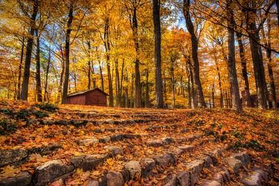 Spring Grove Park - Jamestown, Michigan