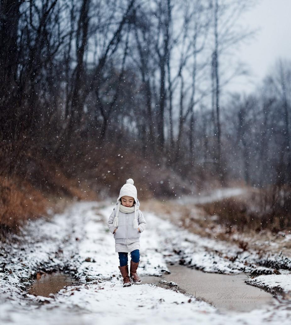 Snow Flurry by liliaalvarado - Take A Stroll Photo Contest