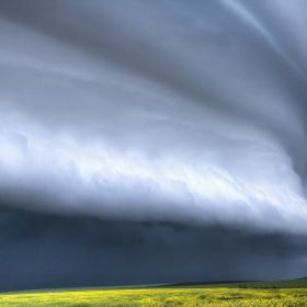 A large shelf cloud packing strong winds, rain and hail near Kindersley Saskatchewan Canada.