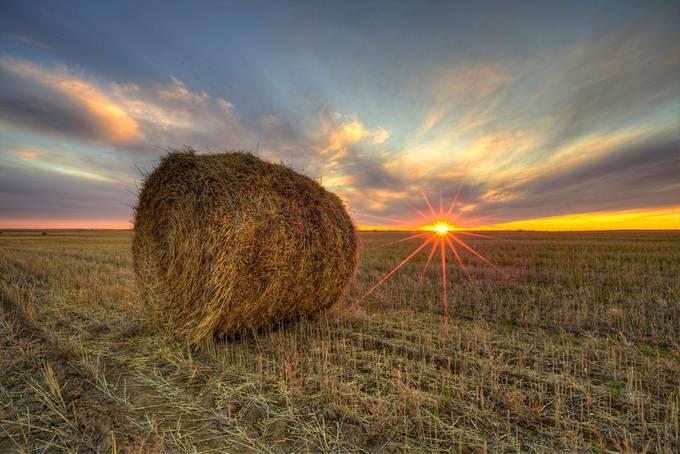 Saskatchewan Sunset  by RyanWunsch