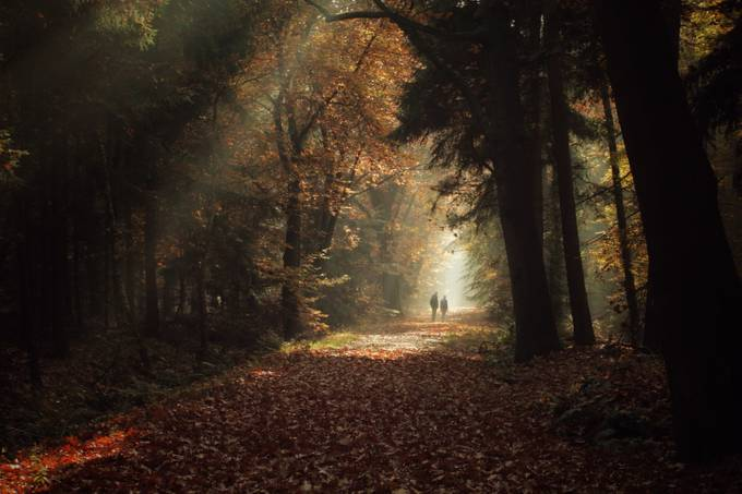 Autumnal equinox by vincentcroce - Take A Stroll Photo Contest