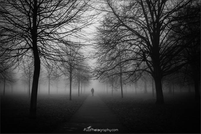Into the mist by FuzzPhotography - Mysterious Shots Photo Contest