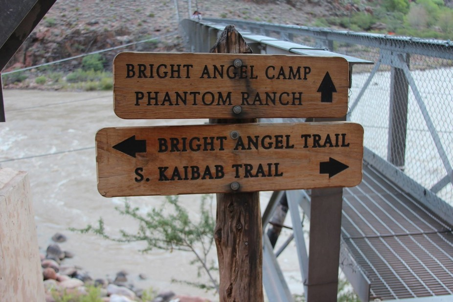 Hiking the Grand Canyon and we hit the crossroads.